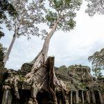 1000 tancerzy w Preah Khan