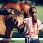 4368.Poland.Janow .Podlaski.Arab .horses 150x150 Holocaust Mahnmal Stelen